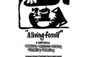 NEW DVD smoothn casual aliving fossil