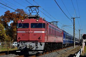2016年12月3日 団臨「懐かしの急行列車で行く東京おとな旅」 EF81 81+12系 他
