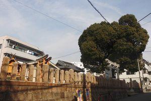 猿田彦神社 -神戸市灘区灘南通-