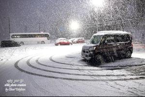 ・・・北摂(関西の北部)は20年ぶりの大雪だった