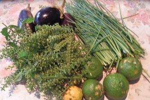 20161012「収穫」ナス、ネギ、カボス、シソの実