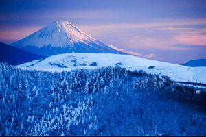 今日の一枚〜2014/12/23撮影〜