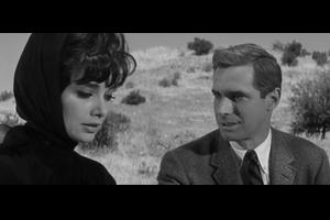 A Rege to Live (生きる情熱, 1965)について