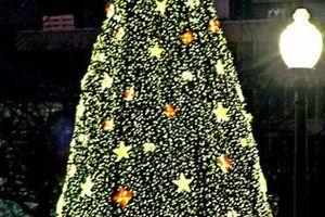 オバマ大統領家族、 最後のクリスマスツリー点灯