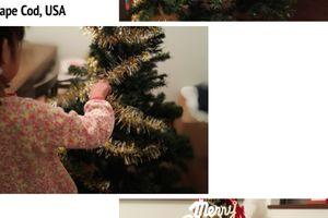 娘、初めてのクリスマスツリーを飾る。