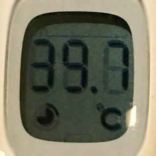 10月27日(土)高熱が出た。肝臓への再発ガンと血糖値の関係など