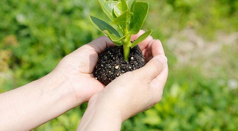 【放射性廃棄物】環境省「除染した土を園芸などを植える農地造成に再利用させよう」