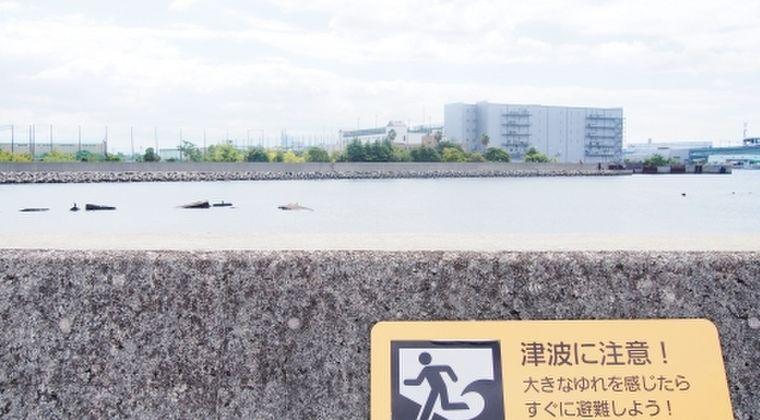 【南海トラフ】3m以上の津波確率、四国・近畿・東海で26%以上の最高ランク…地震調査委員会「これは交通事故に遭いケガをするより高確率です」