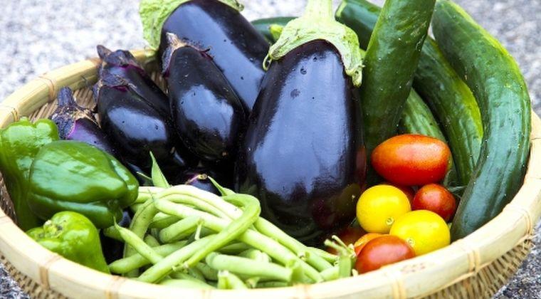 【高騰】異常気象で野菜が記録的な不作に…大阪で「キュウリやニンジン」6割高!市場「全ての野菜が高くなっている。こんな年は初めて」