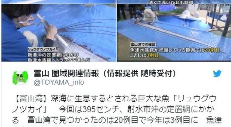 【前触れ】富山県射水市沖の定置網に「リュウグウノツカイ」がかかる…水族館が把握している範囲では20例目で今年は「3例目」