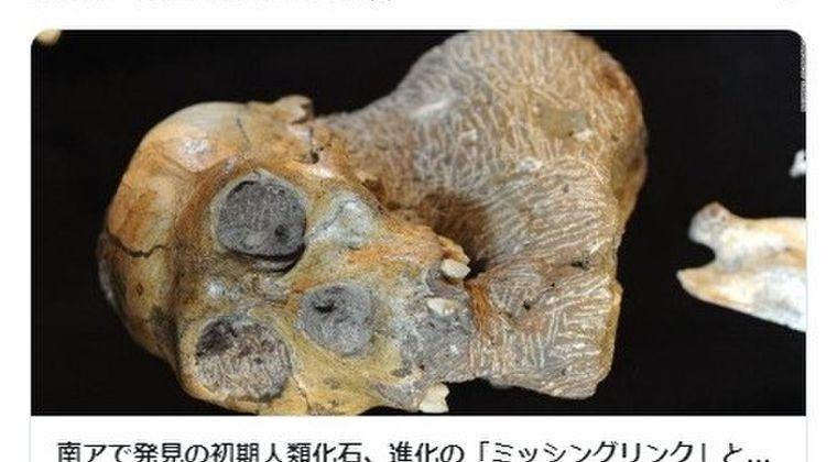 【進化論】謎であった人類進化の欠けた部分を埋める「ミッシングリンク」を南アメリカで発見