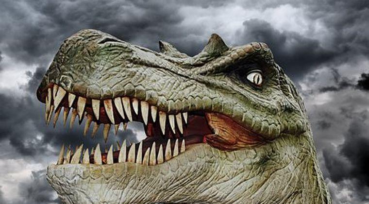 【巨大生物】カナダで発見されたティラノサウルスの化石、世界最大のものと判明…体重8800キロ超
