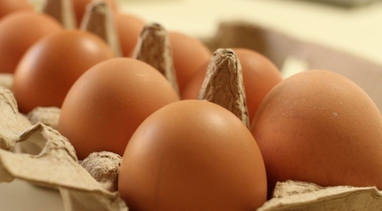 【リスク増加】1週間に「卵を3個以上」食べてるあなた!残念ですが早死にします…アメリカ医学誌で発表される