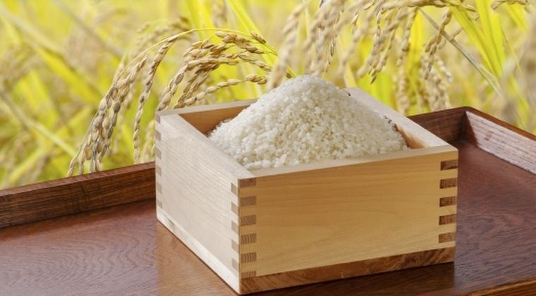 【食べて応援】福島県産の「米」が2年連続でトップになり、特Aランクを4銘柄で獲得!