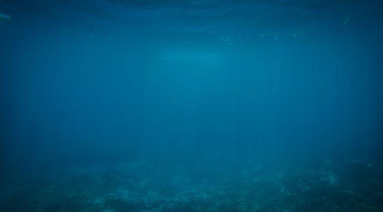 【研究】20万種近い未知のウイルスが海中で発見される…専門家「大多数がこれまでに知らないものだった」