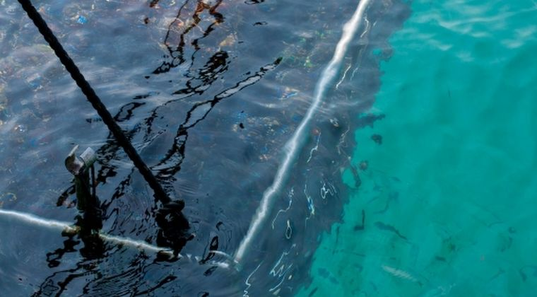 【南海トラフ】三重県・英虞湾で「アコヤガイ」が謎の大量死…水産研究所「原因は皆目見当がつかない」