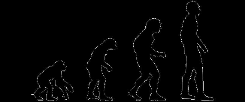 地球人類の本来の寿命は「38歳」だった!?DNA解析による脊椎動物の寿命を人類種で推定してみた結果