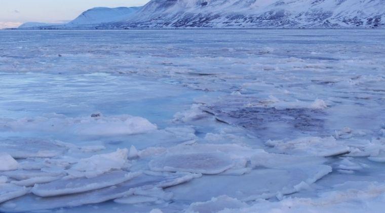 【自己修復】温暖化で氷河から溶け出した水が、アマゾンの熱帯雨林を上回る勢いで大量の二酸化炭素を吸収