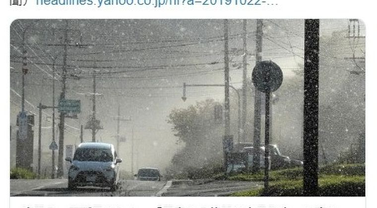 【ヤバい】北海道・函館で「雪虫」が大量発生!あたり一面「虫」だらけ…鳥肌注意