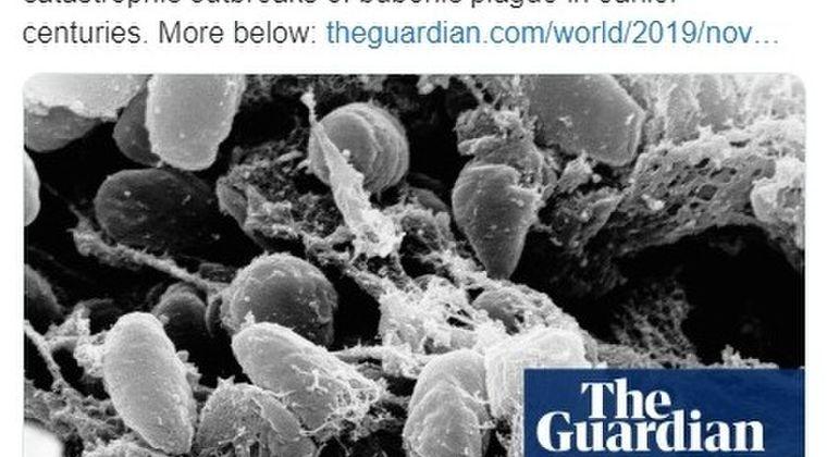 【黒死病】中国で感染力が特に強い「肺ペスト」が発生…WHO「ペストの中で最も悪性の形態」