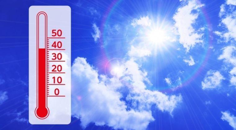 【暑すぎ】あまりの暑さにドイツでは「川が干上がり、葉っぱが枯れ落ちる」…EU関連機関「今年7月は世界中で観測史上最も暑い月だった」