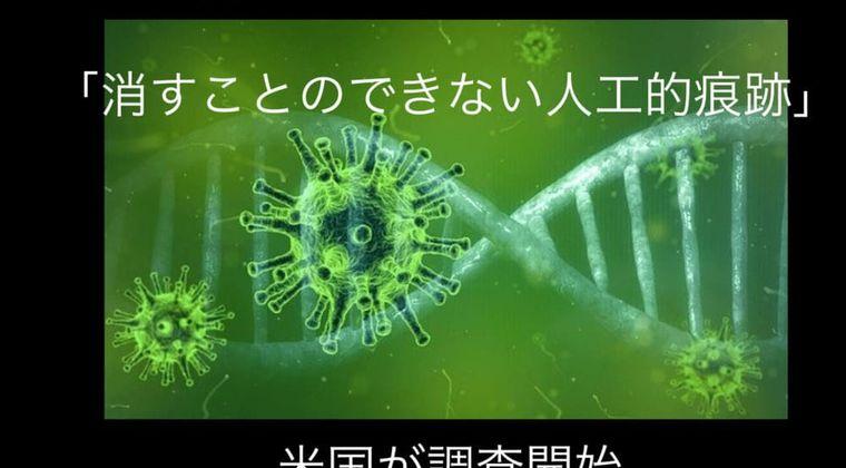 米国が調査開始、新型コロナウイルスに「消すことのできない人工的痕跡」