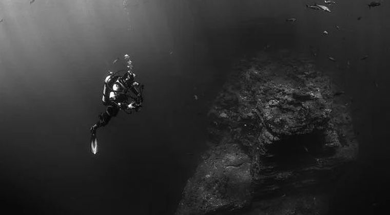 【希少生物】深海の未知感は異常…巨大生物っているんかな