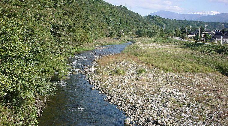 【原因調査中】富山の熊野川で「鮎などの魚3000匹ほど」が大量死してるのが見つかる