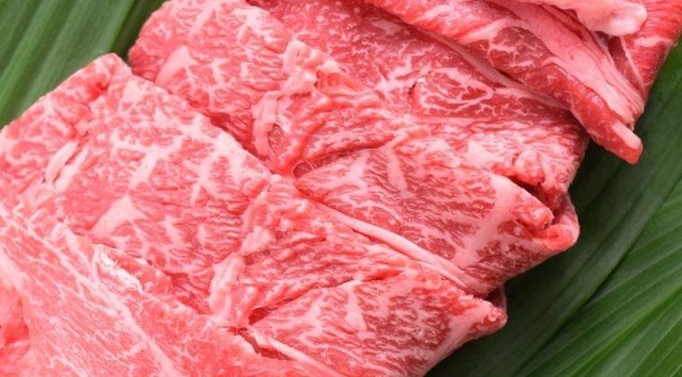 【やりたい放題】日本政府「経済対策の商品券は、和牛お肉購入券として国民に配布したい」