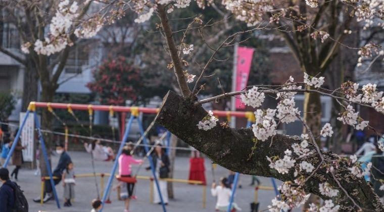 自粛できない人「公園なら3密じゃないし、外に出て過ごしていいよね!」 → 今や東京と神奈川のどこの公園も家族連れなどであふれかえり、とんでもない事態に