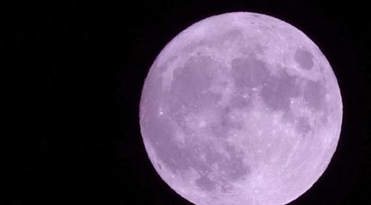 【満月】「ピンクムーン」は見ましたか?