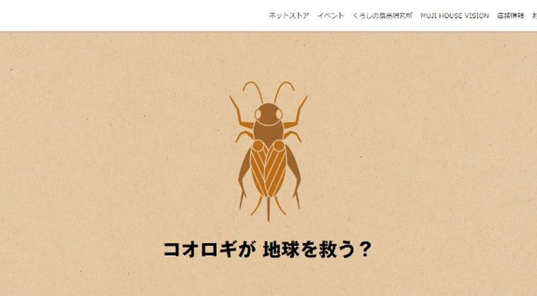 【コオロギ】昆虫食、高タンパクで低価格で量産可能で日本でも流通し始める