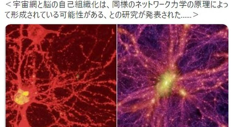【神秘】やはり「脳と宇宙の構造」は酷似している…ネットワーク力学の原理によって形成されている可能性