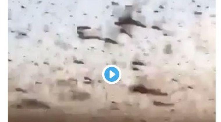 【蝗害】サウジアラビアの空を覆うバッタの大群!インド洋沿岸諸国で甚大な被害