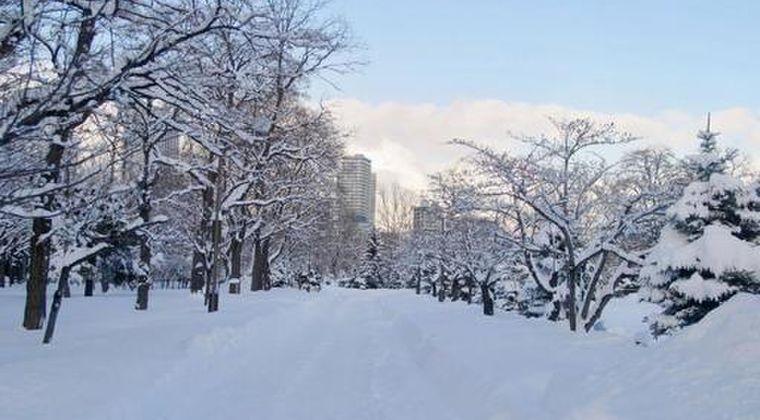 【非常事態宣言】アメリカ北東部でも大雪…ニューヨークで「30cm」積雪予想