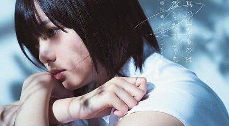 【朗報】欅坂46 解散 菅井友香「欅坂46は、この5年間の歴史に幕を閉じます」