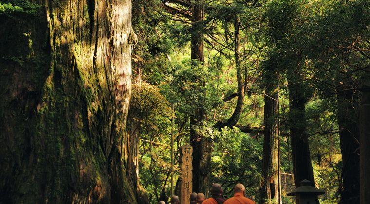僧侶が仏具を燃やして山火事に…「コロナで不要になり、供養のため燃やしていた」  滋賀