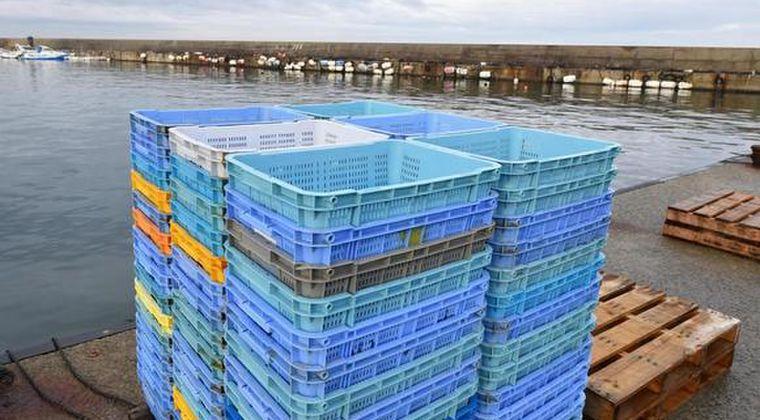 【赤潮】北海道で「ウニとサケ」が大量死…青森では「イカ」が記録的不漁