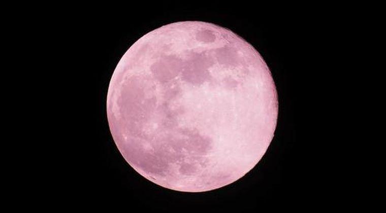 【お月見】明け方に満月の瞬間を迎える「ストロベリームーン」を見ましたか?