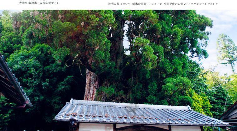 【岐阜】豪雨で倒れた「ご神木」、樹齢1300年ではなく670年だった…根の中心部は腐朽進む