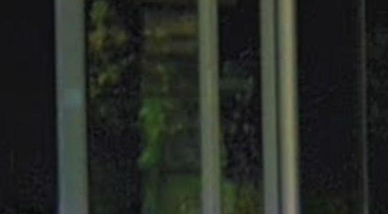 【閲覧注意】Googleマップに「顔」みたいなの映ってるんだけど、これって幽霊?