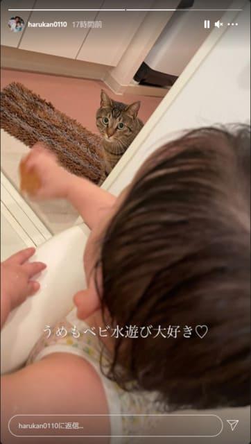 遠藤和(のどか)さんインスタ更新なく…現在の容態に懸念 がんで余命数週間