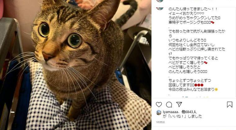 遠藤和さんの退院を妹がインスタ報告 抗がん剤投与4回目で「車椅子生活」に