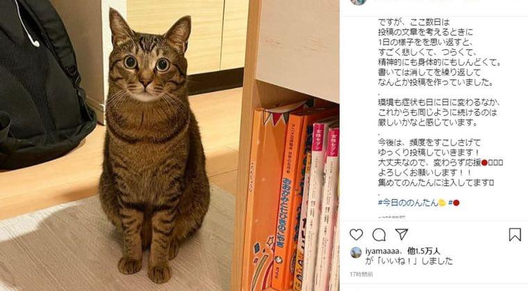 遠藤和の妹、インスタ「続けるのは厳しい」現在のがん症状に辛い胸中を吐露
