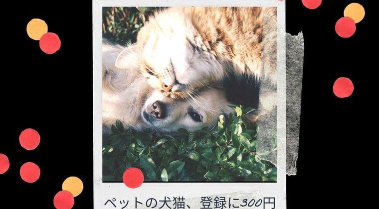 ペットの犬猫、登録だけで300円か1000円 マイクロチップ装着義務 22年6月~