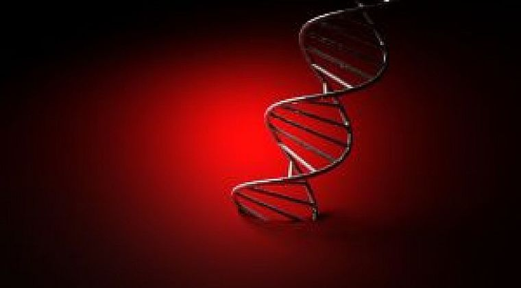 人の遺伝子の中に「謎の種族」の情報が…学者も動揺したDNAの解析結果とは?