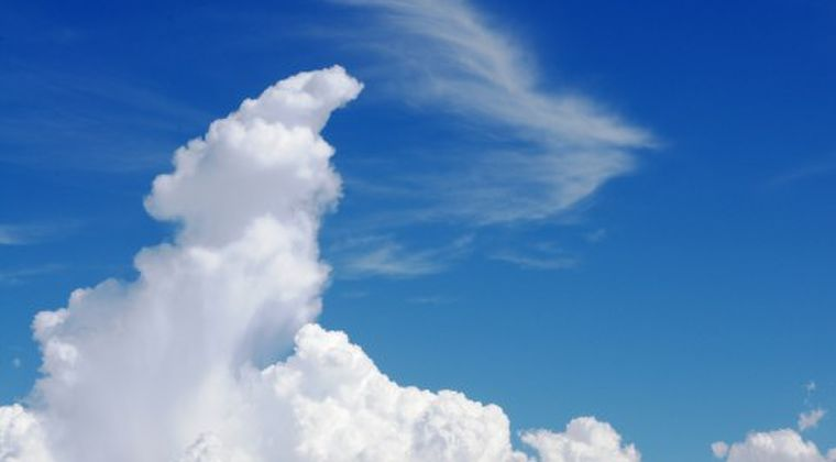 高知、山梨、群馬で40度超 35度以上、今夏最多の295地点