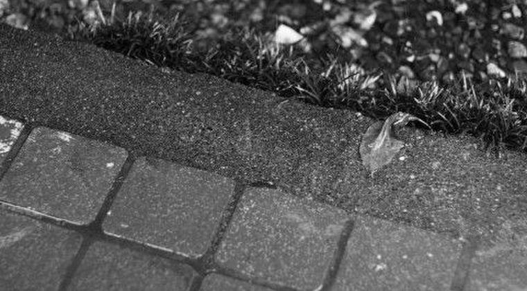 長崎原爆後の「黒い雨」、がん死亡率に影響せず
