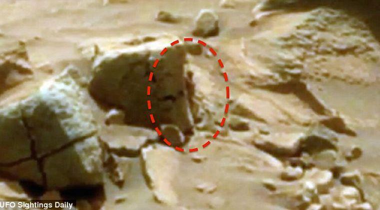 火星で「小人型の宇宙人」を発見!推定身長15センチ