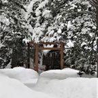 北海道の日常5